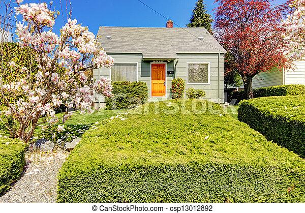 房子, 春天, 開花, 綠色, 外部, 樹。, 小 - csp13012892