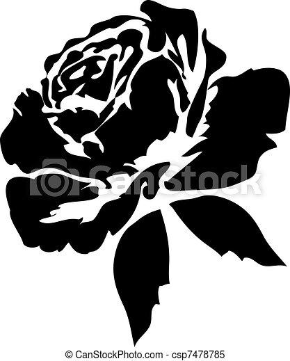 玫瑰, 黑色 - csp7478785