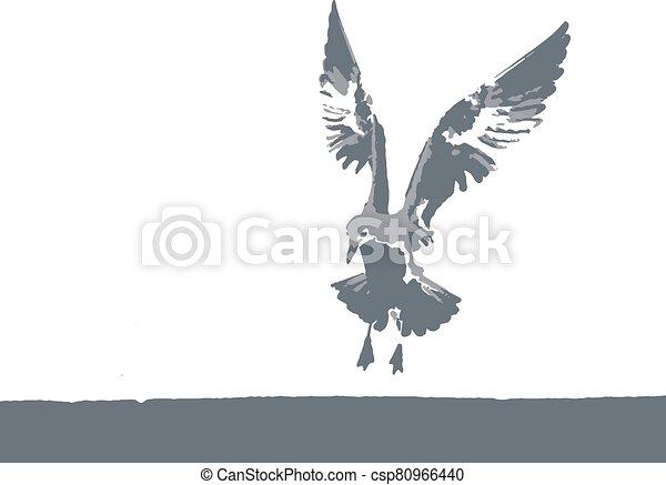 矢量, 海鷗, 自然, 插圖 - csp80966440