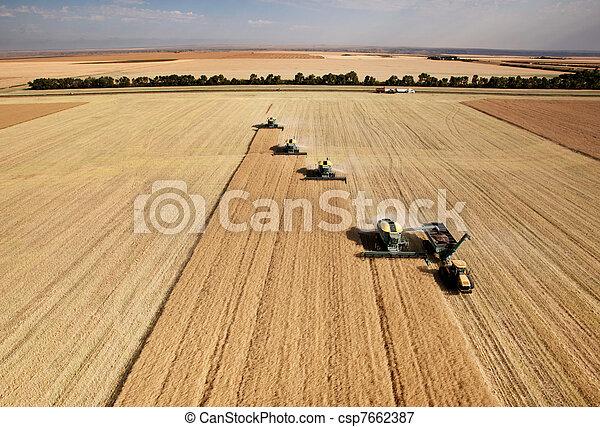 空中, 收穫, 看法 - csp7662387
