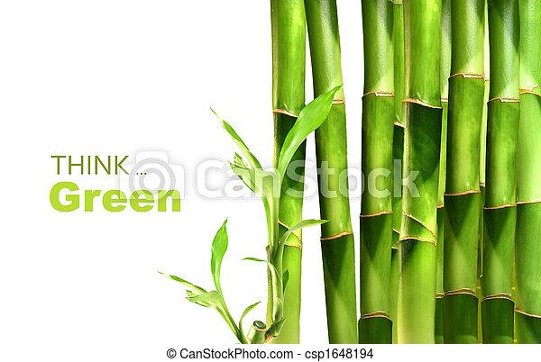 竹子, 堆積, 射擊, 邊 - csp1648194