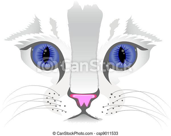 關閉, 貓, 向上, 臉 - csp9011533