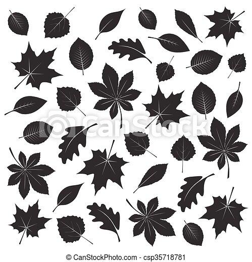 leafs., 矢量, 黑色, illustration., 彙整 - csp35718781