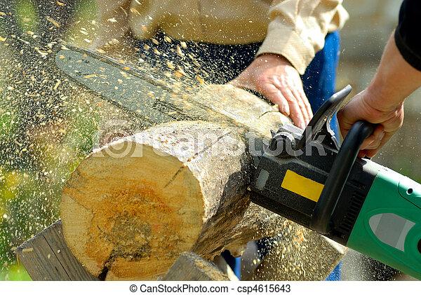 lumberjack, 工作 - csp4615643